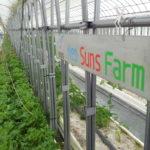 <b>ちょっと変わった福利厚生をご紹介!</b><br>ネオスの農園「NeoSuns Farm」旬のお野菜がもらえます!